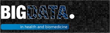 bigdata2013logo